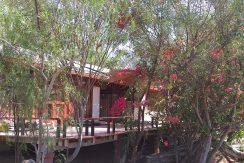 Terreno Azapa/2 casas, piscinas